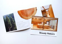 woodyreborn_catalog01
